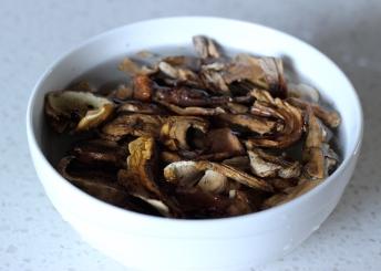 porcini-mushroom-arancini